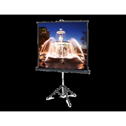 Экран Projecta ProView 127x127