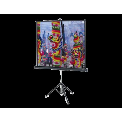 Экран Projecta Professional 152x152