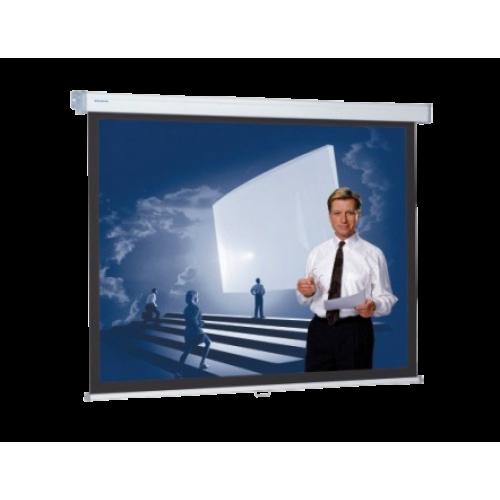 Экран Projecta Экран настенный 240x240 см Профи
